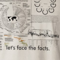 Let's face the facts Tee T-shirt
